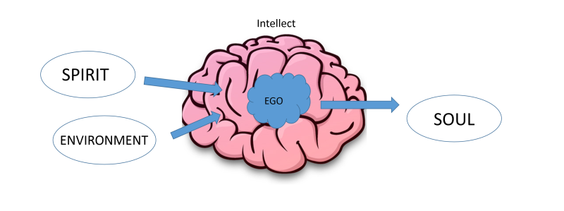 intellect 5