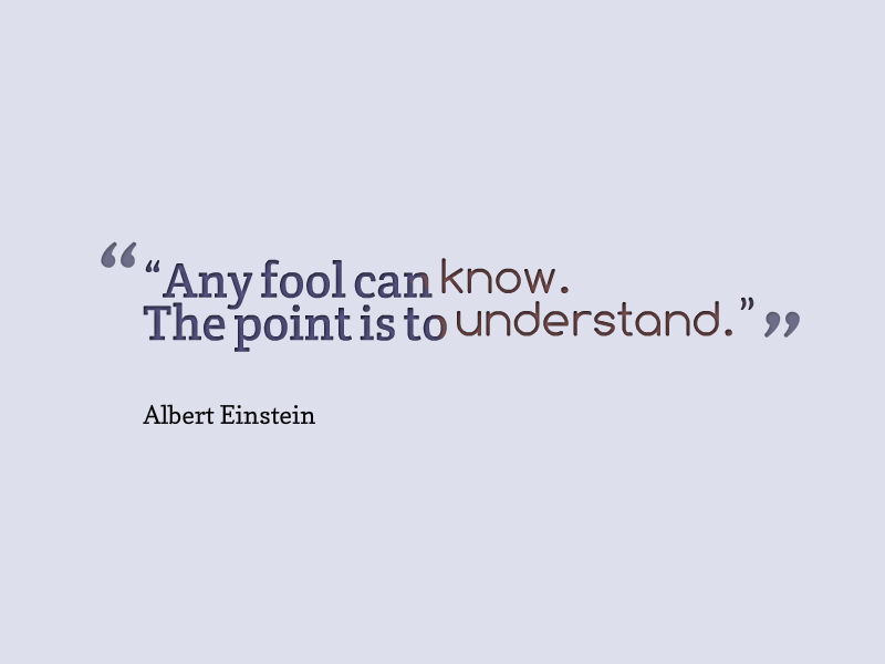 albert-einstein-any-fool-can-know-the-point-is-to-understand
